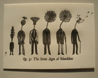 A4 Letterpress Print- The Seven Ages of Mandelion - Dandelion Letterpress Print- Unique Literary Gift- FREE WORLDWIDE SHIPPING