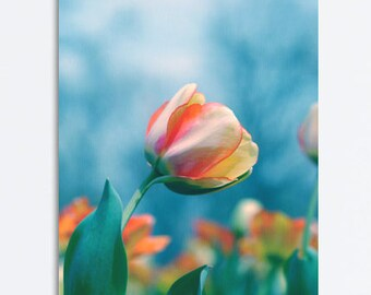 Floral canvas art, tulip flower photography, blue teal wall art, turquoise decor large gallery wall art, nature canvas print, botanical art