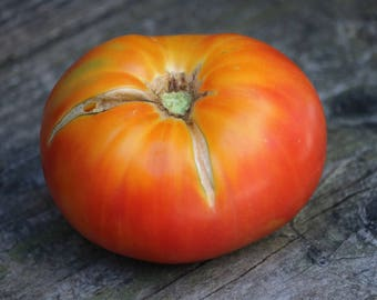Tomato Seeds, Orange German beefsteak tomato, heirloom tomato seed, vegetable seed for organic gardens, pesticide free, non gmo seeds