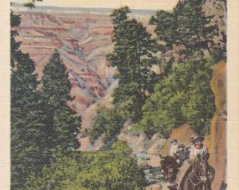 Vintage Arizona Postcard - Bright Angel Trail, Grand Canyon National Park, Horseback Riding