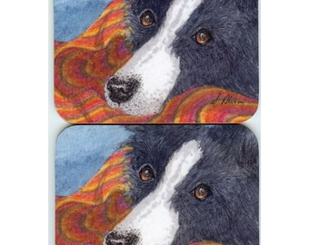 2 x Border Collie coasters - waiting, always waiting for supper, for a game, for you... sheepdog black and white dog patient