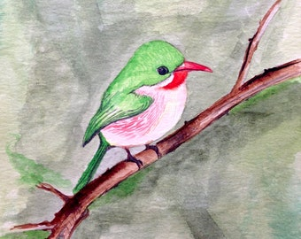 Small bird, original watercolor painting, 13cmx 19 cm
