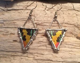Butterfly jewelry, handmade real butterfly jewelry, real moth earrings, Real moth jewelry, moth wing Necklace, sunset moth earrings