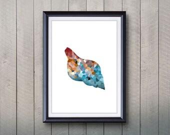 Seashell Print - Home Living - Seashell Ocean Animal Painting - Wall Art - Wall Decor - Home Decor, House Warming Gifts
