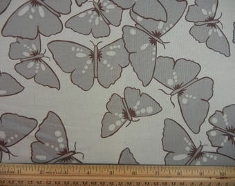 Neutral - Taupe Butterflies -  Westminster