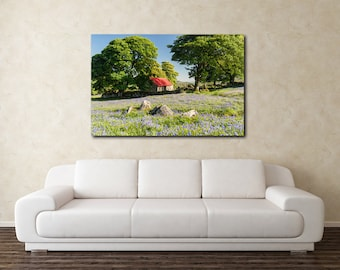 Bluebell Canvas Print, Canvas of bluebells, country scene with bluebells, Emsworthy Mire canvas print, dartmoor,
