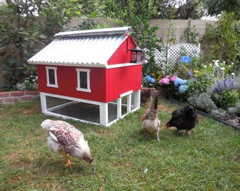Easy Clean Chicken Coop