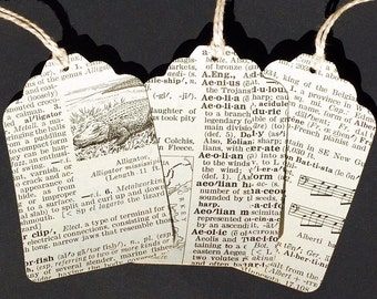 Dictionary Gift Tags- 15 recycled illustrated dicionary gift tags, vintage dictionary tags, paper tags