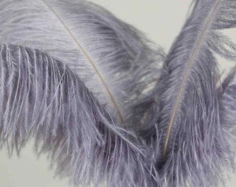 10 Pcs Grey / Silver Ostrich Feather Plume 14-16""