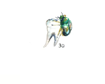 "Watercolor Molar with June Bug, Dark Art, Anatomical Art, Dentist Art, Tiny Painting 11""x15"""