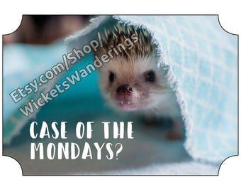 hedgehog Case of the Mondays card