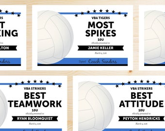 Volleyball awards etsy editable volleyball award certificates instant download printable black and blue yadclub Image collections