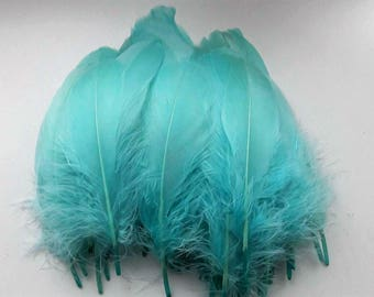 set of 5 feathers teal 15-20cm