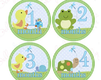 Neutral Monthly Baby Stickers, 1 to 12 Months, Monthly Bodysuit Stickers, Baby Age Stickers, Pond Babies