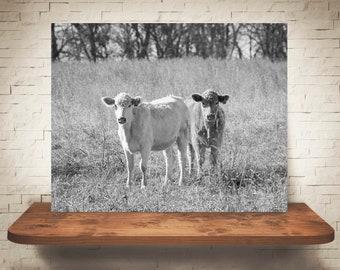 Cow Photograph - Fine Art Print - Black White Photography - Wall Art - Home Decor - Wall Decor -  Farm Pictures - Farmhouse Decor - Cows