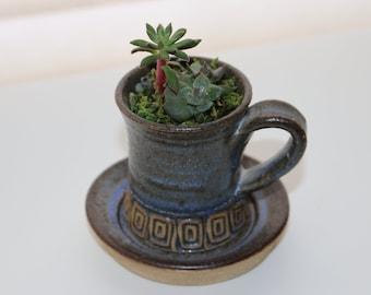 Succulent Arrangement *Java Cup* Home Decor
