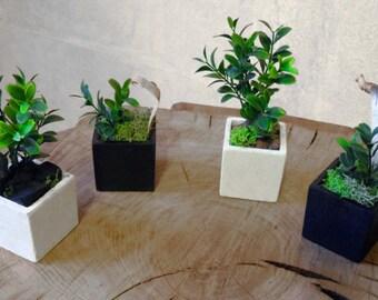 Plant pot, plant pot composition composition, flower pot, flower pot