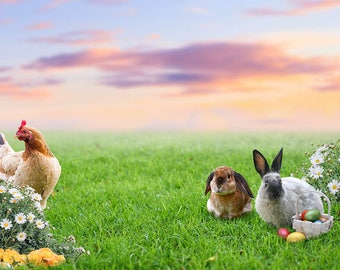 Easter Bunny's with Hen, premade Backdrop, Bunny Backdrop, Photography, Photo Manipulation, Photoshop Backdrop, Composite, Fantasy Backdrop