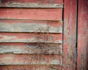 Old Barn Photograph - Rural North Carolina - Vintage Red Barn Print - Weathered Paint, Old Wood