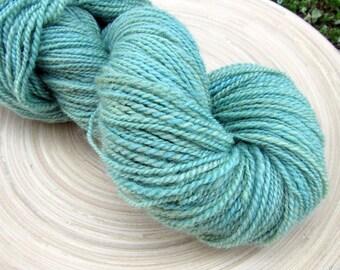 Handspun yarn - SW BFL wool hand dyed - 2 ply - 110 grams 320 yards