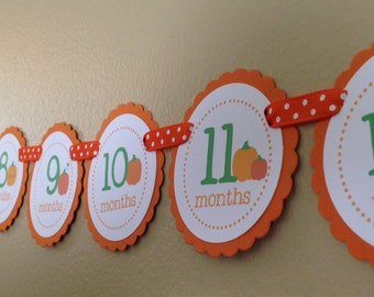 Pumpkin Collection: Just Born/0-12 mos Picture Banner. Pumpkin First Birthday Banner. Orange. Harvest. Fall. Autumn.
