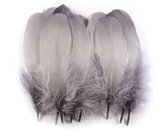 Goose Feathers Grey 10819