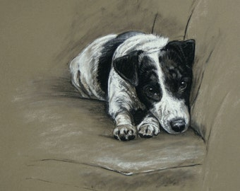 Jack Russell Terrier dog gift dog lover gift LE print from an original chalk and charcoal available unmounted or mounted ready to frame