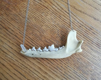Coyote Jaw Bone with Clear Quartz Fang Necklace