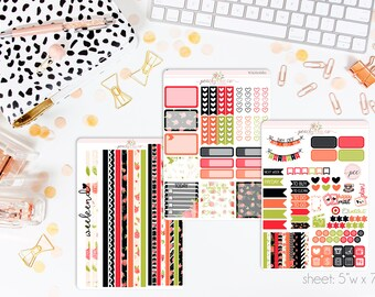 Poppy HORIZONTAL Weekly Kit // 130+ Matte Planner Stickers // Perfect for your Erin Condren Life Planner // WKH0680