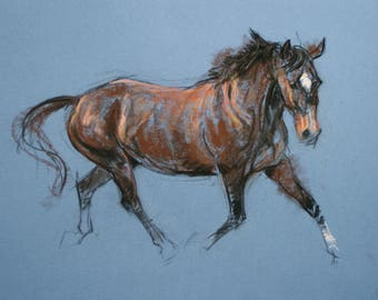 SALE Original horse art equine art energy and movement equine horse soft pastel movement art drawing 'Trot II' by H Irvine