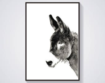 Printable Donkey Poster Animal Poster Burro Print Printable art Photography Digital Art Download Print Nature Wild Farm Black White Print