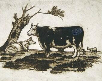 Cow Print, Original Art Etching, Funny Cow