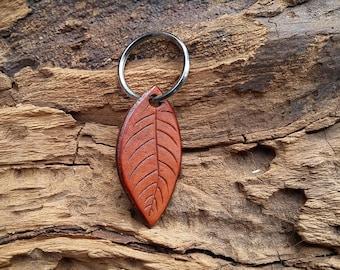 Leather Leaf