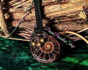 Ammonite wire wrapped fossil