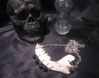 Real Animal Bone Necklace ( Jaw Bone Necklace)