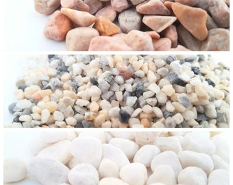 1/2 lb Natural Stones and Pea Gravel for Bonsai Terrarium Succulent Air Plant Aquarium Crafts DIY Decorative Rocks Garden Accessories
