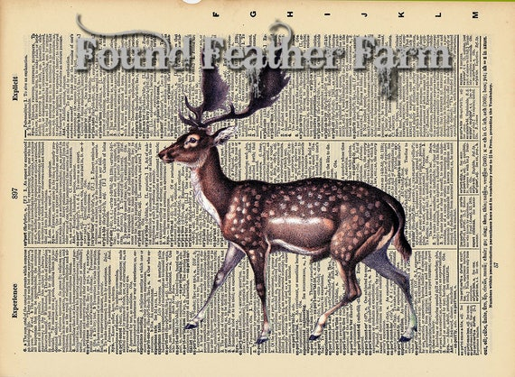 "Vintage Antique Dictionary Page with Antique Print ""Fallow Deer Horizontal"""