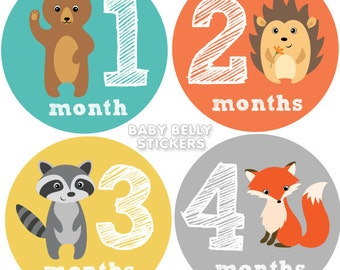 Baby Month Stickers, Monthly Baby Stickers, Monthly Milestone Stickers, Baby Monthly Stickers, Baby Belly Stickers, Woodland Animals