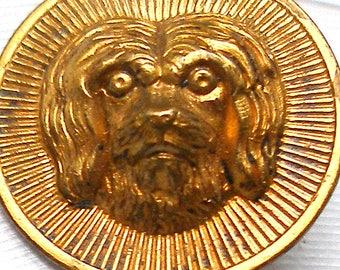 "Antique DOG BUTTON, 1800s Victorian Terrier, 3/4""."