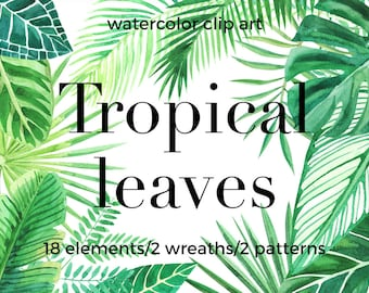 Tropical leaves. Watercolor clip art.