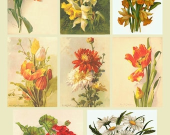 Vintage Flowers Collage Sheet - Postcards - Spring and Summer  - Yellow and Orange - 2.5 x 3.5 ACEO Size - Digital Download - Printable