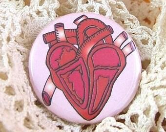 3 Stylized anatomical Heart Pinback Buttons