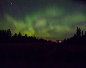 Northern Lights, Aurora Sky, Denali National Park, Aurora Art, Aurora Wall Decor, Landscape Photography, Rob's Wildlife, Green Alaska Sky