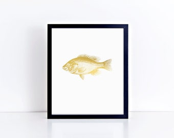 Fish Skeleton - Foil Prints, Wall Art Decor & Gift Prints,  8x10