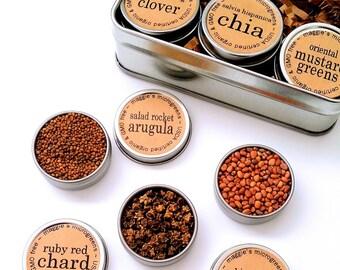 DIY Microgreens Maggie's BESTSELLERS Seed Kit Indoor Garden - Organic Vegan Gourmet Microgreens Seeds in Reusable Tin Gift Box