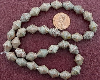 bicone gemstone fossilized agate beads