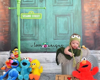 Personalized Sesame street inspired street sign - double sided - personalized