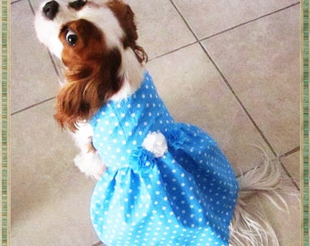 Dog Dresses Blue Turquoise Polka Dot:  Dog Clothes Pet Clothes  Personalized  Dress Chihuahua ShihTzu King Charles Spaniel