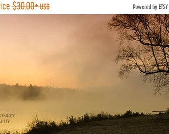 25% Memorial Day Sale sunrise tree landscape photography fine art photograph home decor office decor