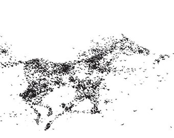 Horse Art, flock of birds, Black and White wall art by Laura Sue